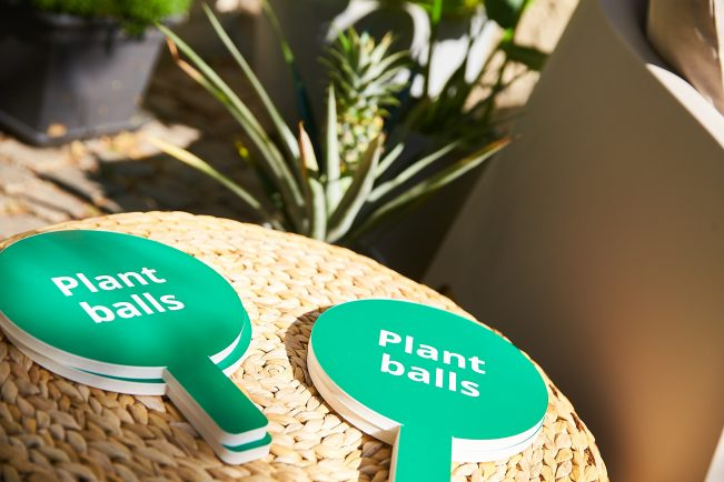Plant balls