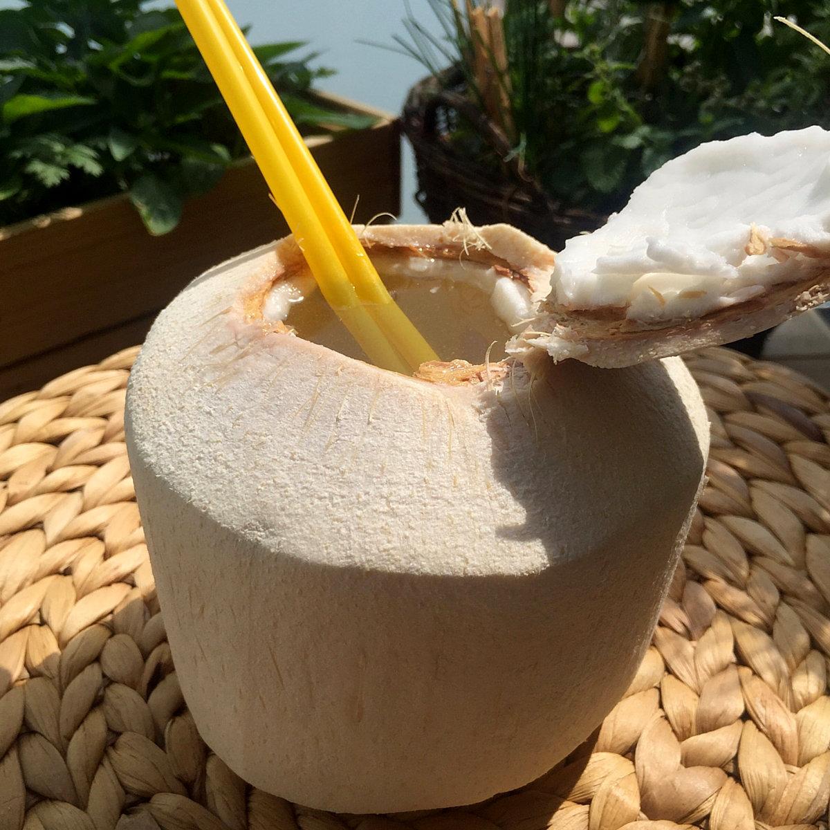 Na Jarné Vegánske Hody 2020 pre Vás pripravíme obľúbený Jackfruit HotDog, na osvieženie mladé kokosy a ako vitálny snack budeme mať pre Vás pripravené delikátne naturálne sušené ovocie. Tešíme sa na Vás :)